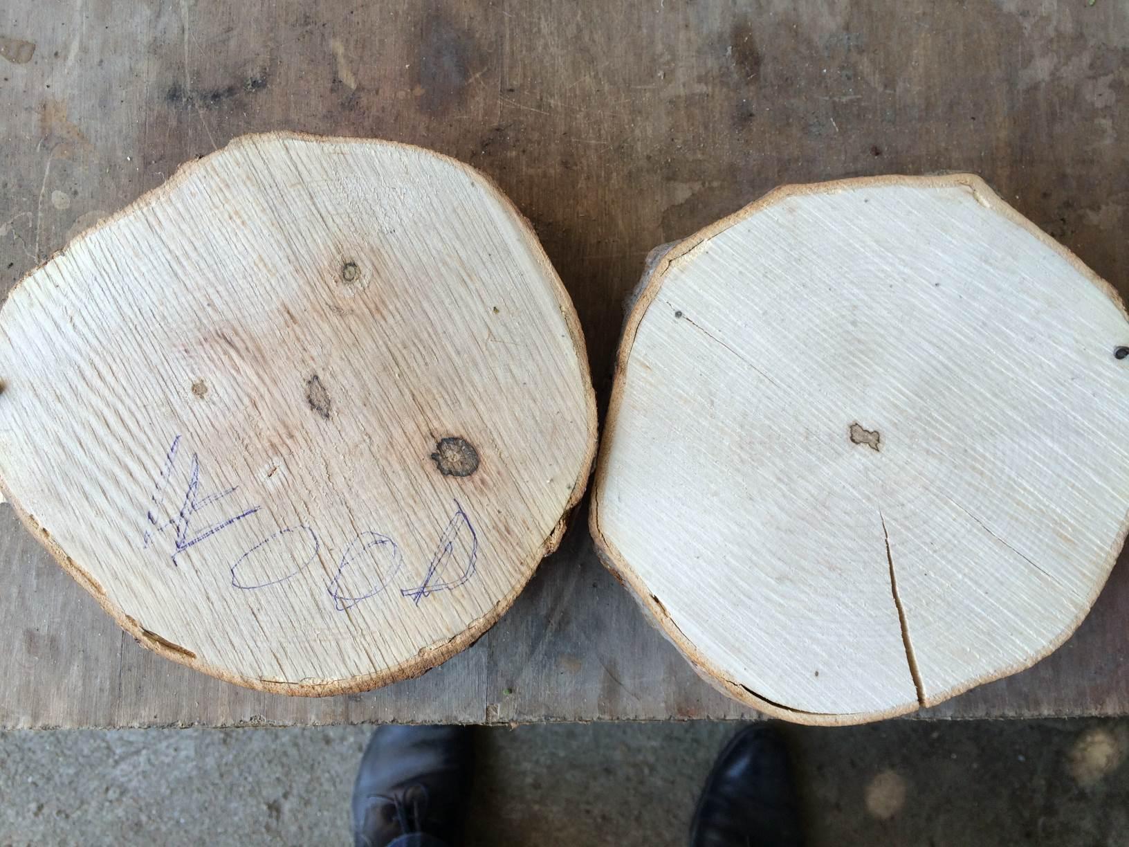 Teste facute de clienti cu produsul Bios Wood Total